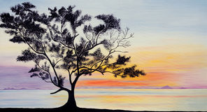 绘画剪影天空日落结构树 免版税库存照片
