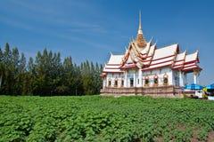绘画寺庙泰国下面 库存照片