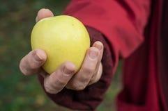 给一个黄色苹果的妇女 图库摄影