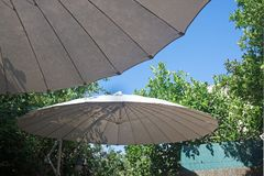 给一些树荫的遮阳伞 免版税库存照片