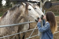 给喜爱的少妇有些马 免版税库存照片