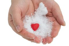 给在雪的手心脏,华伦泰` s天,捐赠题材,在白色背景 库存照片
