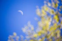 给新月形月亮中间天打蜡 免版税库存图片