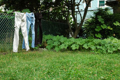 给牛仔裤线路穿衣 免版税库存照片