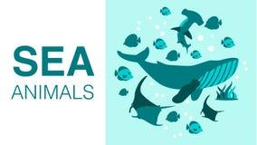 给的海洋动物平的动画片横幅设计做广告 皇族释放例证