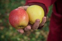 给红色和黄色苹果的妇女 免版税库存图片