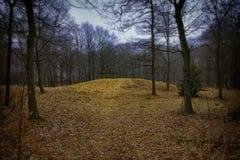 绞架小山在Ribe,丹麦 库存照片