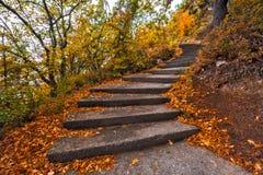 绞的具体楼梯在秋天 免版税库存照片