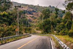 绞的山柏油路通过森林 免版税库存图片