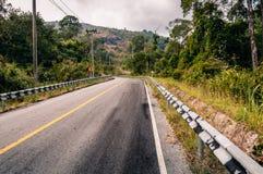 绞的山柏油路通过秋天森林 图库摄影