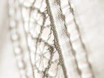 绣花织物白色 库存照片