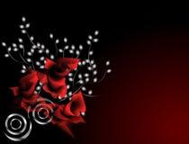 绯红色玫瑰 免版税库存图片
