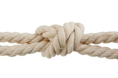 绳子结 库存照片