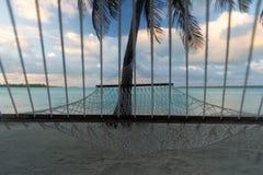 绳索吊床在棕榈树下,前面看法,Aitutaki,库克群岛 免版税图库摄影