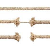 绳索设置了 免版税库存照片