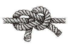 绳索 向量例证