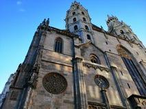 维也纳大教堂 免版税图库摄影