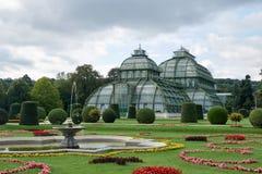 维也纳,奥地利- 2017年9月02日:玻璃房子在Shonbrunn公园 图库摄影