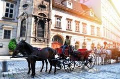 维也纳,奥地利- 2014年5月01日:用马拉的支架或fiaker,受欢迎的旅游胜地,在维也纳奥地利 免版税库存图片