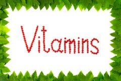 维生素 在白色背景的红浆果莓果在从绿色叶子的框架 库存图片