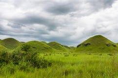 绵延山、豪华的绿草和软的白色云彩在刚果共和国,中非的乡下 图库摄影