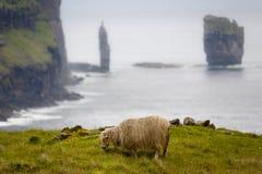 绵羊和著名岩层: Risin和Kellingin。 图库摄影