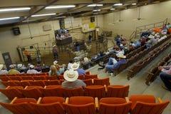 绵羊拍卖,圣安吉洛, TX,美国 免版税库存照片