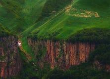 绵羊牧群在山的 免版税库存图片