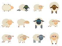 绵羊逗人喜爱的羊羔农厂iicons设置了传染媒介被隔绝 皇族释放例证