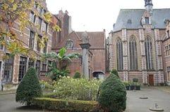 绽放的比利时 比利时样式 图库摄影