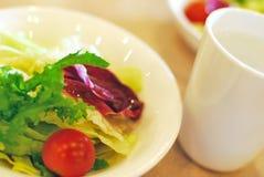 绿化健康查找的沙拉 免版税库存图片