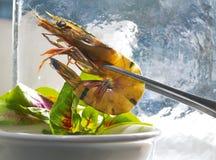 绿化大虾 库存照片