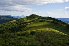 绿化山 图库摄影
