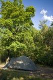 绿化帐篷在结构树下   库存照片