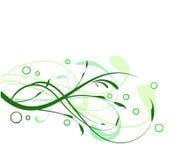 绿化漩涡 免版税库存照片