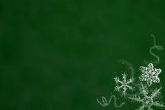 绿化雪 免版税库存图片