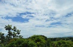 绿叶和云彩在菲律宾 免版税库存照片
