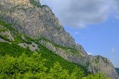 绿叶围拢的山土坎反对背景多云天空3 免版税库存照片