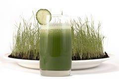 绿叶素膳食 库存照片
