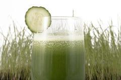 绿叶素膳食 免版税图库摄影