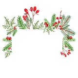 绿叶花圈横幅与手拉的水彩冬天evegreen植物和红色莓果与地方文本的 向量例证