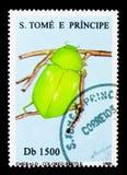 绿宝石色甲虫,昆虫serie,大约1996年 库存图片