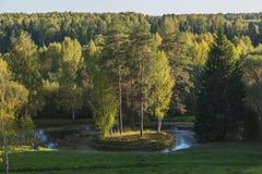 绿岛乡森林河 库存图片