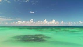 绿松石加勒比海,礁石,天际鸟瞰图  影视素材