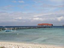 绿松石海洋和paradisiaque海滩 免版税库存照片