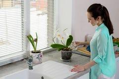 绿松石衬衣的浅黑肤色的男人在厨房里倾吐从一杯的一朵兰花在窗台的一个透明罐 库存照片