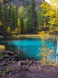 绿松石阿尔泰山的喷泉湖 E 库存照片
