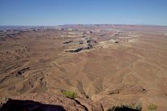 绿河俯视, Canyonlands N.P。 库存图片