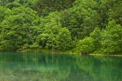 绿河 免版税图库摄影