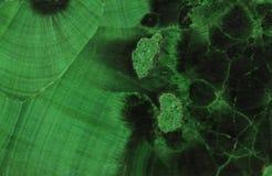 绿沸铜绿色矿物宝石 免版税库存照片
